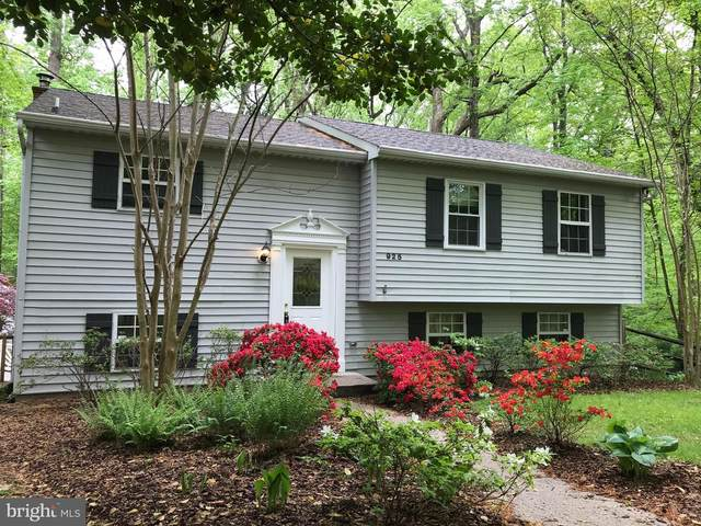 925 Diggs Road, CROWNSVILLE, MD 21032 (#MDAA464722) :: Network Realty Group
