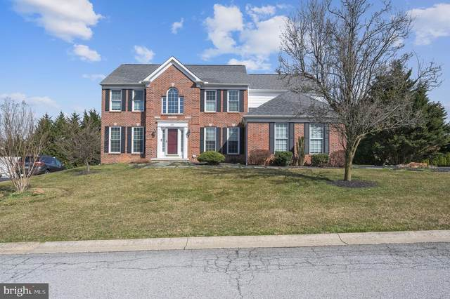 224 Goldfinch Turn, NEWARK, DE 19711 (#DENC524358) :: The Team Sordelet Realty Group