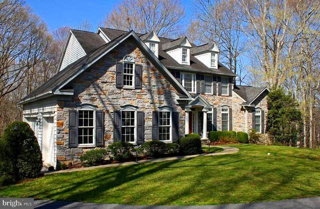 1206 Grey Stone Terrace, ARNOLD, MD 21012 (#MDAA464744) :: The Piano Home Group