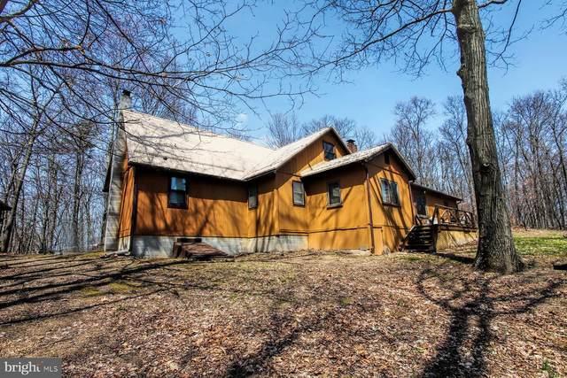 14585 Serenity Hill, BLAIRS MILLS, PA 17213 (#PAHU101926) :: The Joy Daniels Real Estate Group