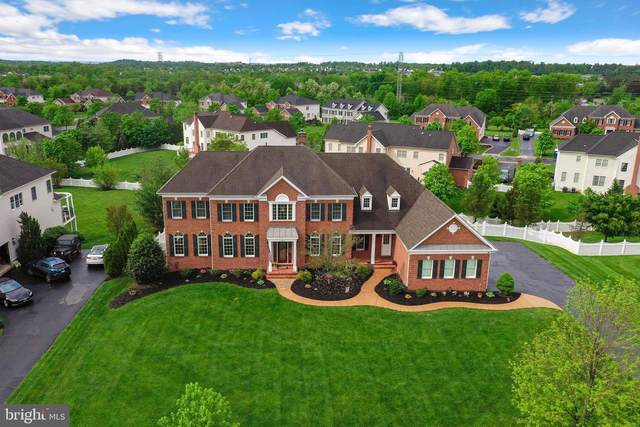 20015 Belmont Station Drive, ASHBURN, VA 20147 (#VALO435522) :: Colgan Real Estate