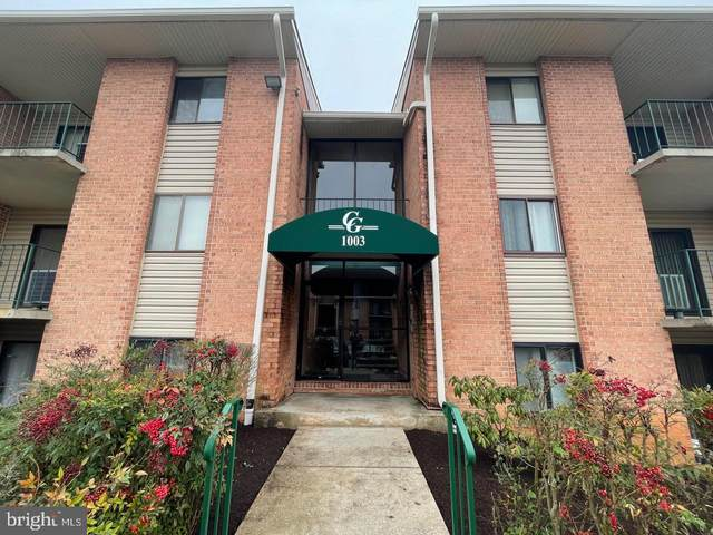 1003 Spring Gate Road 2C, BALTIMORE, MD 21228 (#MDBC525384) :: Gail Nyman Group