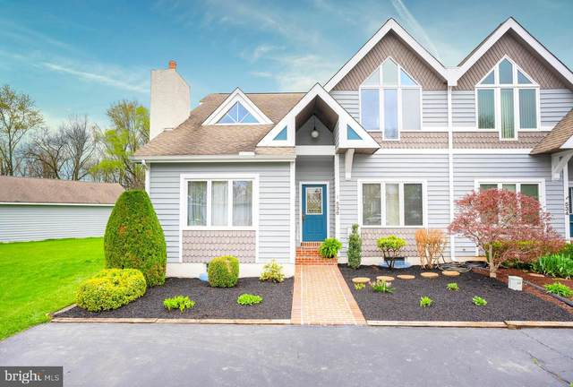 536 Beech Tree Lane, HOCKESSIN, DE 19707 (MLS #DENC524408) :: Kiliszek Real Estate Experts