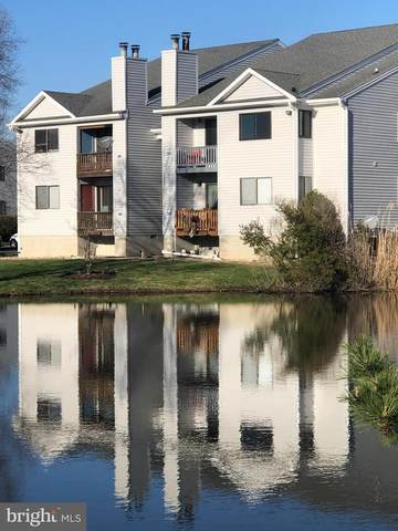 1407 Marion Quimby Drive, STEVENSVILLE, MD 21666 (MLS #MDQA147386) :: Maryland Shore Living | Benson & Mangold Real Estate