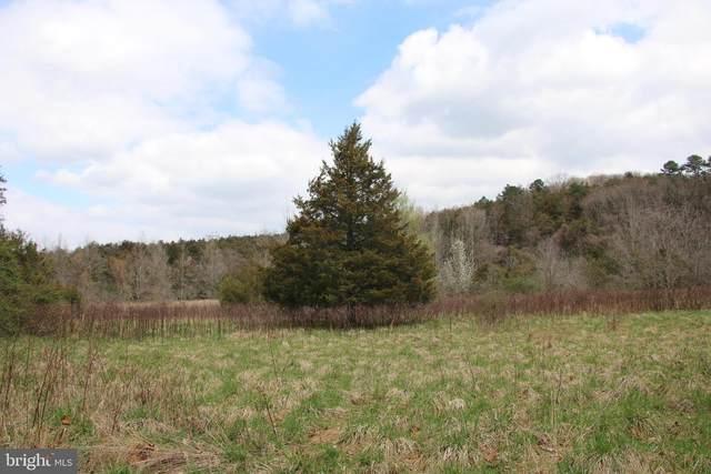Kite Hollow Road, STANLEY, VA 22851 (#VAPA106138) :: The Putnam Group