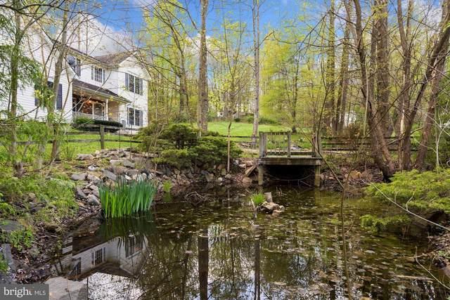 4691 Yowell Lane, MARSHALL, VA 20115 (#VAFQ169972) :: Pearson Smith Realty