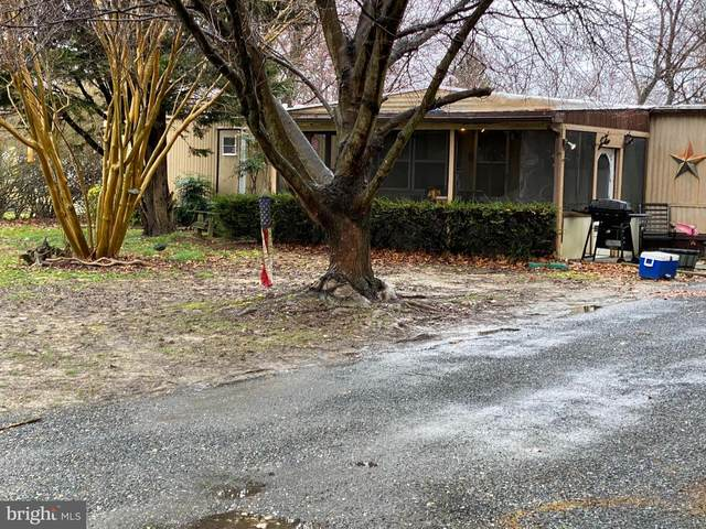 8747 Swann Haven Road, EASTON, MD 21601 (#MDTA140872) :: RE/MAX Coast and Country
