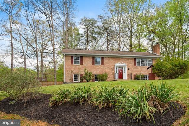 3 Peaceful Court, STAFFORD, VA 22556 (#VAST231146) :: RE/MAX Cornerstone Realty