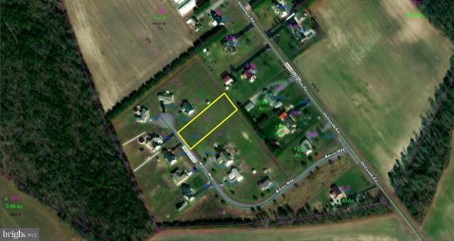 26178 Manor Way, GEORGETOWN, DE 19947 (#DESU181042) :: Brandon Brittingham's Team
