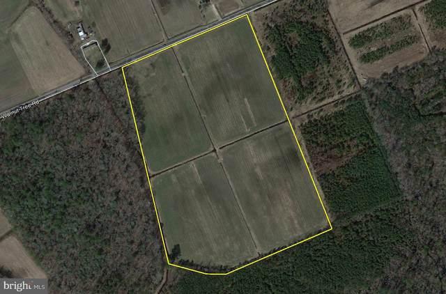 26393 Walnut Tree Road, EDEN, MD 21822 (#MDWC112524) :: Corner House Realty