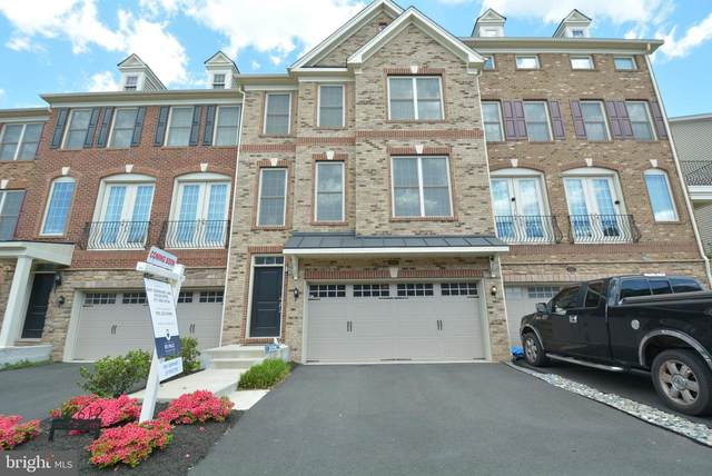 42612 Lisburn Chase Terrace, CHANTILLY, VA 20152 (#VALO435664) :: The Redux Group