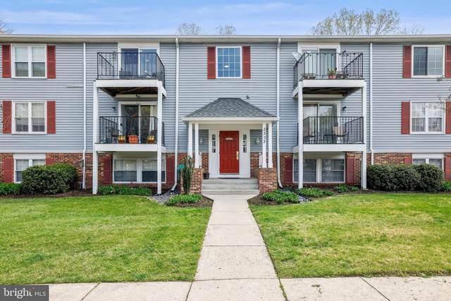 3503 Wedgewood Court M, PASADENA, MD 21122 (MLS #MDAA464946) :: Maryland Shore Living | Benson & Mangold Real Estate