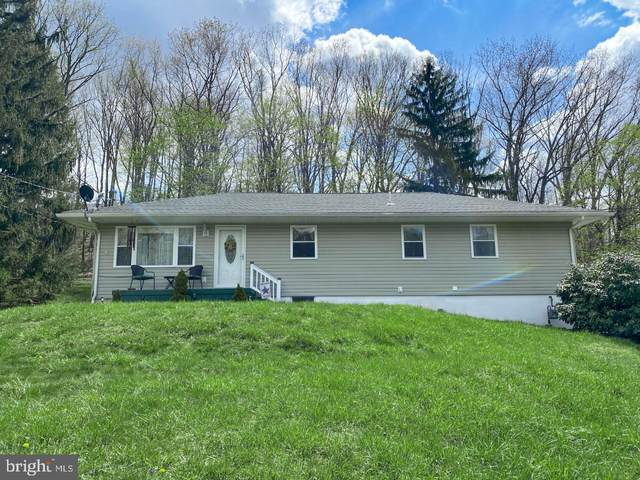 904 Weires Avenue, LAVALE, MD 21502 (#MDAL136716) :: Berkshire Hathaway HomeServices McNelis Group Properties