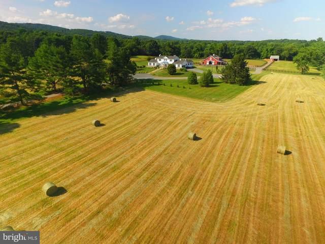 16616 Gaines Road, BROAD RUN, VA 20137 (#VAPW519698) :: The Riffle Group of Keller Williams Select Realtors