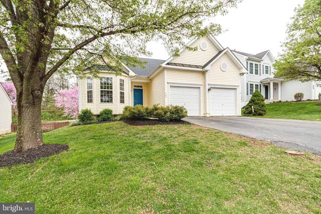 465 Estate Avenue, WARRENTON, VA 20186 (#VAFQ170004) :: Dart Homes