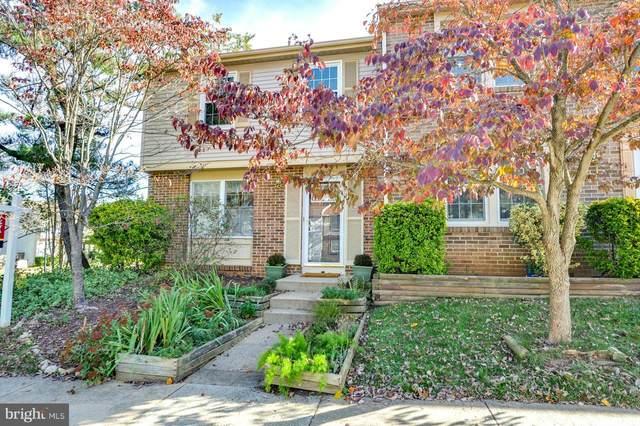 8337 Bark Tree Court, SPRINGFIELD, VA 22153 (#VAFX1193464) :: Crossman & Co. Real Estate