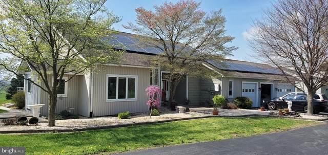 8014 Mapleville Road, BOONSBORO, MD 21713 (#MDWA179012) :: Dart Homes