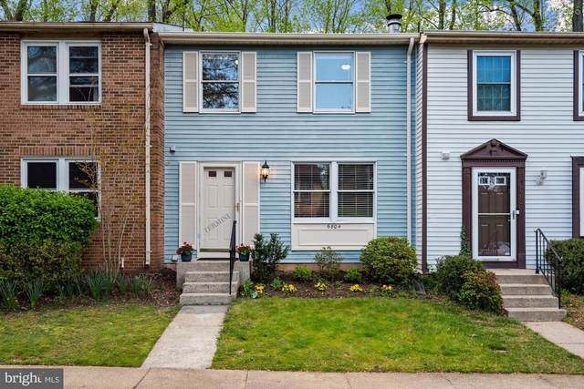6804 Montivideo Square Court, FALLS CHURCH, VA 22043 (#VAFX1193554) :: Arlington Realty, Inc.