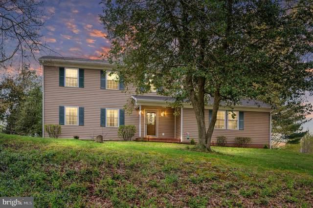 2106 Sebastian Road, FREDERICKSBURG, VA 22405 (#VAST231184) :: Debbie Dogrul Associates - Long and Foster Real Estate