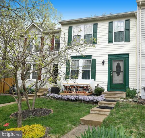 42 Cutter Cove Court, BALTIMORE, MD 21220 (#MDBC525612) :: The MD Home Team