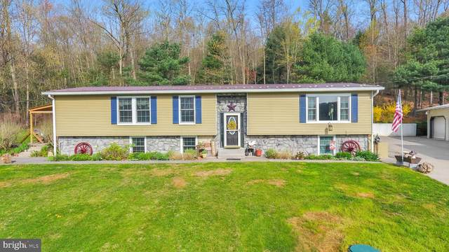 664 Paige Hill Road, NEW BLOOMFIELD, PA 17068 (#PAPY103318) :: The Joy Daniels Real Estate Group