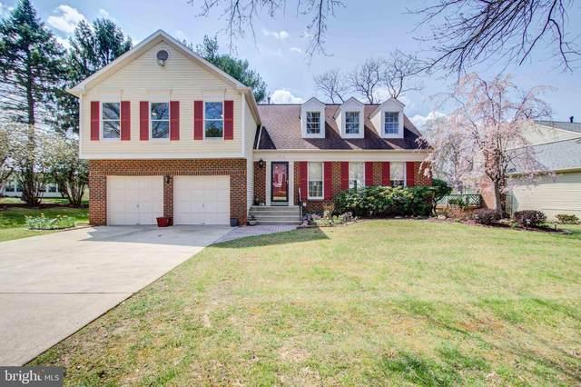 14528 Pebblestone Drive, SILVER SPRING, MD 20905 (#MDMC753438) :: Revol Real Estate