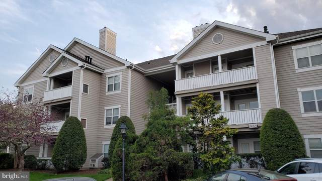 14305 Grape Holly Grove #23, CENTREVILLE, VA 20121 (#VAFX1193886) :: Corner House Realty