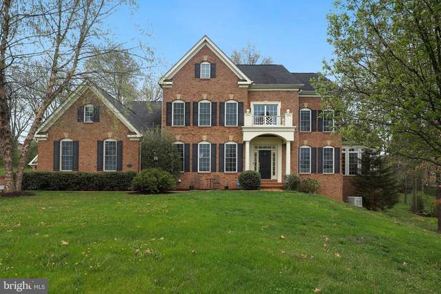 16118 Waterford Creek Circle, HAMILTON, VA 20158 (#VALO435854) :: The Miller Team