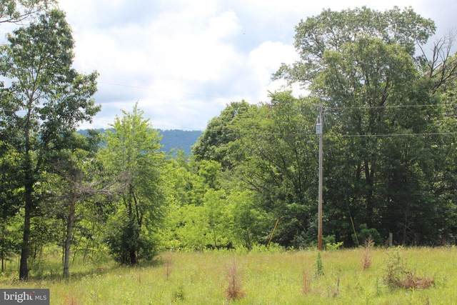 3A Beam Road, ROMNEY, WV 26757 (#WVHS115550) :: Bruce & Tanya and Associates