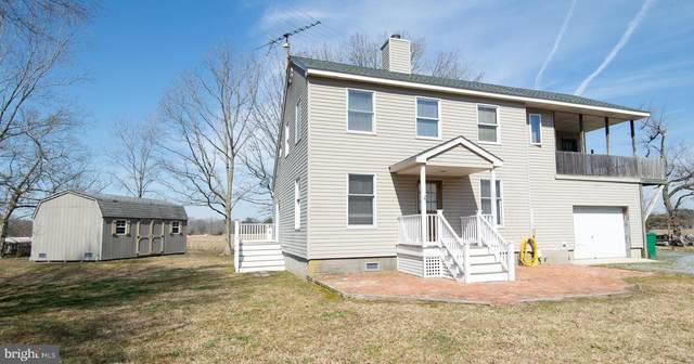 1840 White Haven Drive, CHURCH CREEK, MD 21622 (#MDDO127192) :: Great Falls Great Homes