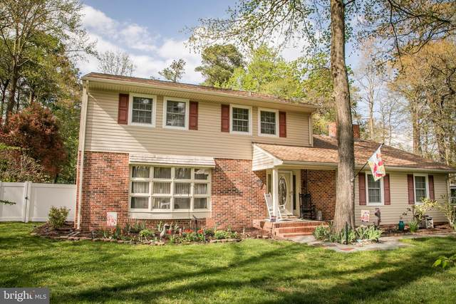 30330 Mallard Drive, DELMAR, MD 21875 (#MDWC112568) :: The Gus Anthony Team
