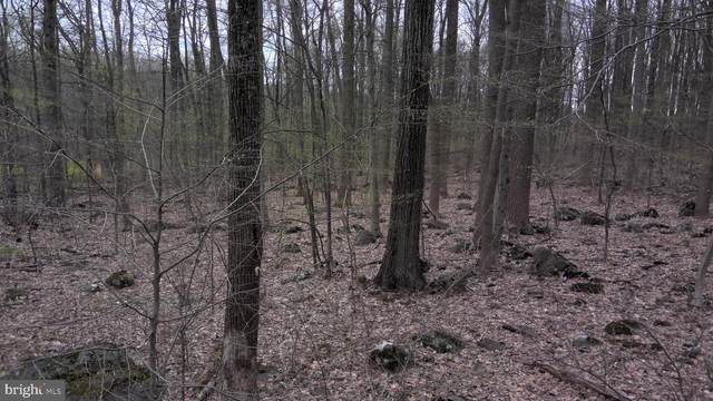 Lot #3 State Road, COOPERSBURG, PA 18036 (#PABU524904) :: Better Homes Realty Signature Properties