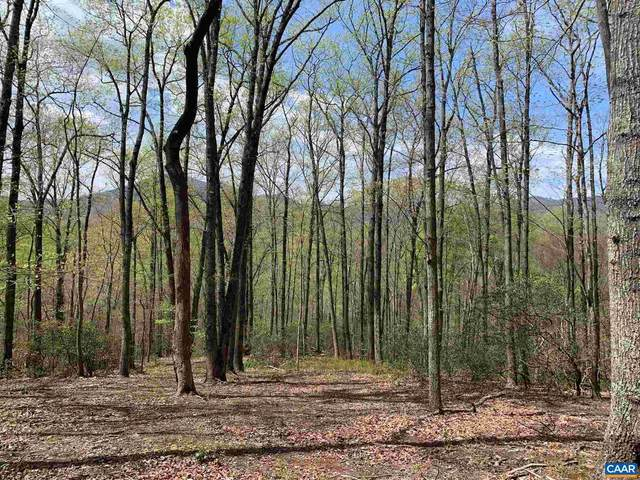 Lot 6 Eagles Ridge Rd, NELLYSFORD, VA 22958 (#616113) :: Dart Homes