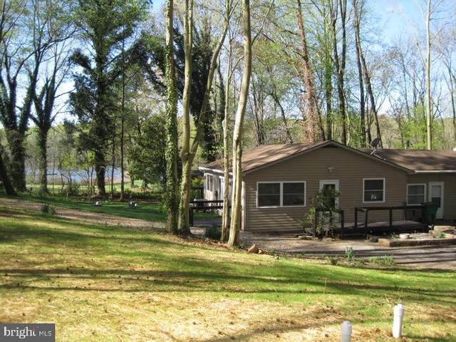 23059 Tuckahoe Springs Drive, DENTON, MD 21629 (MLS #MDCM125386) :: Maryland Shore Living | Benson & Mangold Real Estate