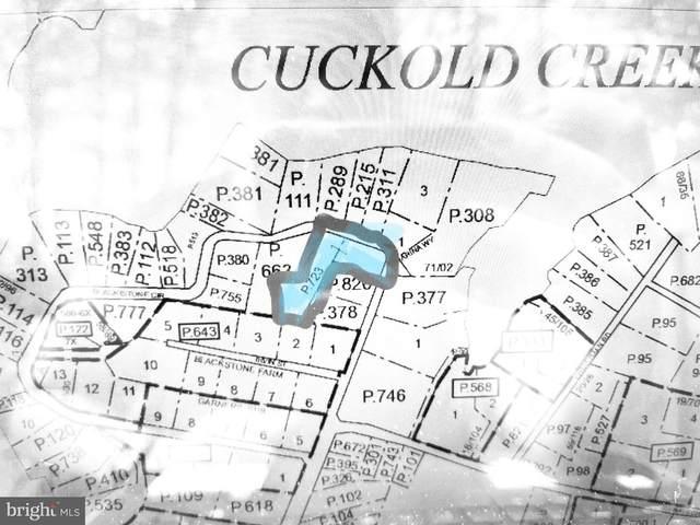 45071 Blackistone Circle, HOLLYWOOD, MD 20636 (#MDSM175676) :: Shamrock Realty Group, Inc