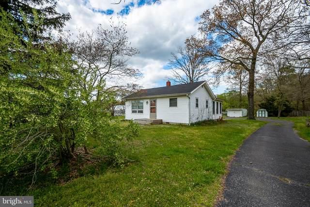 32479 Long Neck Road, MILLSBORO, DE 19966 (#DESU181260) :: Bright Home Group