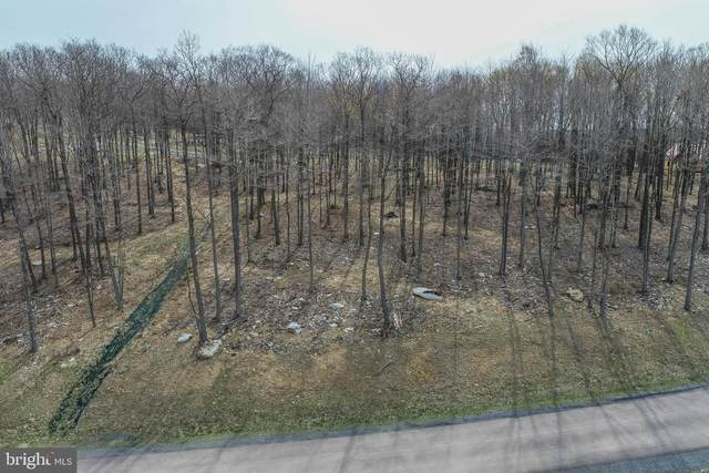 Lot 49 Fork Run Trail, MC HENRY, MD 21541 (#MDGA134974) :: AJ Team Realty
