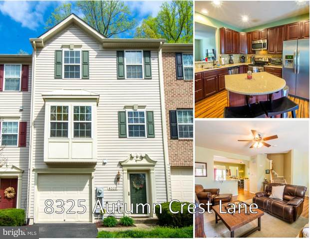 8325 Autumn Crest Lane #4, CHESAPEAKE BEACH, MD 20732 (#MDCA182318) :: ExecuHome Realty