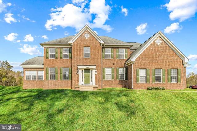 11571 Mica Place, LOVETTSVILLE, VA 20180 (#VALO435988) :: ExecuHome Realty
