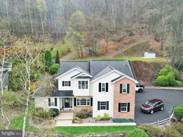 1281 Oak Terrace Lane, POTTSVILLE, PA 17901 (#PASK134960) :: Ramus Realty Group