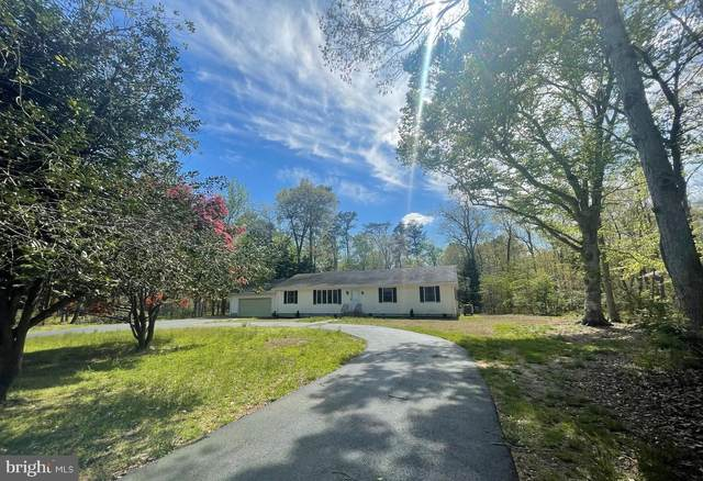 25011 Pealiquor Road, DENTON, MD 21629 (#MDCM125392) :: The Maryland Group of Long & Foster Real Estate
