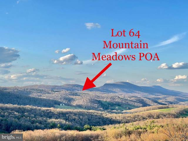 Lot 64 Laurel Run, MATHIAS, WV 26812 (#WVHD106816) :: The Sky Group