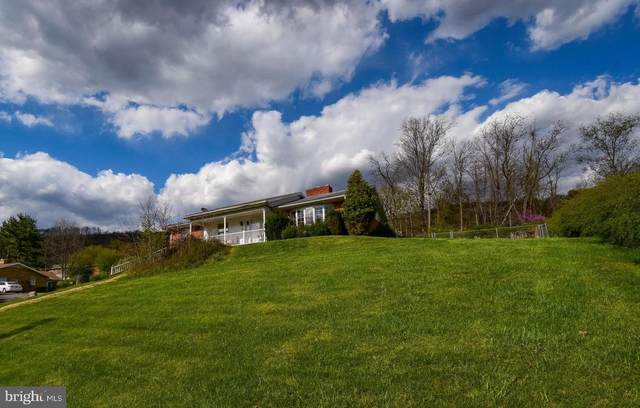 300 Marsh Avenue, WESTERNPORT, MD 21562 (#MDAL136766) :: Bruce & Tanya and Associates