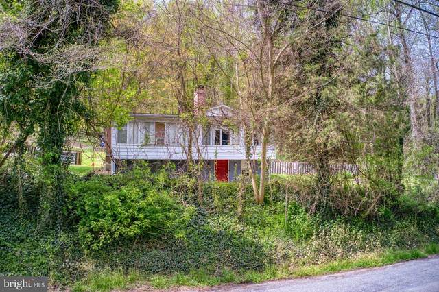 368 River Road, AIRVILLE, PA 17302 (#PAYK156690) :: The Joy Daniels Real Estate Group