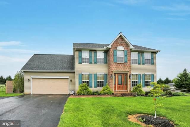 100 E Summit Drive, LITTLESTOWN, PA 17340 (#PAAD115780) :: Liz Hamberger Real Estate Team of KW Keystone Realty