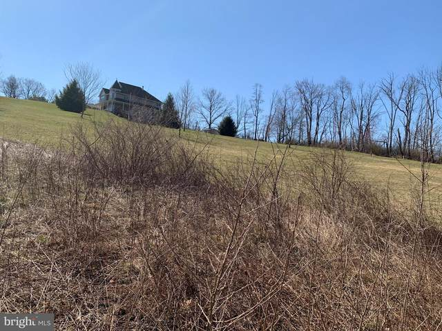 West Hyland Dr., NEW RINGGOLD, PA 17960 (#PASK134974) :: REMAX Horizons