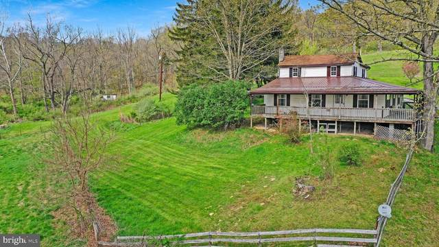 21307 Long Mountain Road, WESTERNPORT, MD 21562 (#MDAL136778) :: The Redux Group