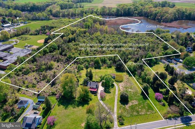 Chesterfield Avenue, CENTREVILLE, MD 21617 (MLS #MDQA147448) :: Maryland Shore Living | Benson & Mangold Real Estate