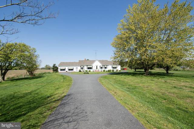 5460 Mount Holly Road, EAST NEW MARKET, MD 21631 (#MDDO127238) :: Pearson Smith Realty