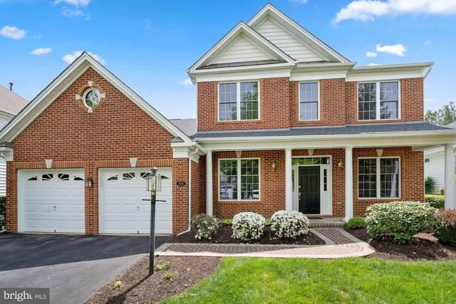 5344 Trevino Drive, HAYMARKET, VA 20169 (#VAPW520318) :: Colgan Real Estate